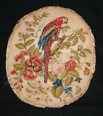 Fabulous Antique Early Victorian Berlin Woolwork Panel Parrot & Flowers.