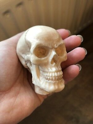 Skull Walking Stick Handle Head