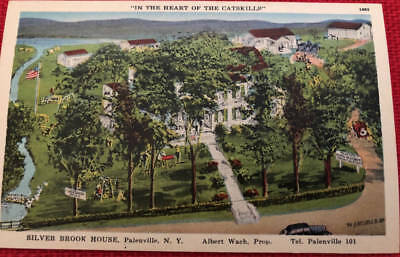 *vintage Postcard* Silver Brook House In The Heart Of The Catskills*