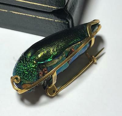 RARE 18K Yellow Gold Metallic Scarab REAL Insect Bug Beetle Statement Pin Brooch