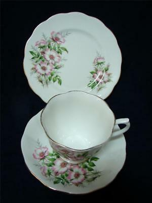 Vintage ROYAL ALBERT trio Friendship WILD ROSE cup saucer plate HIGH TEA