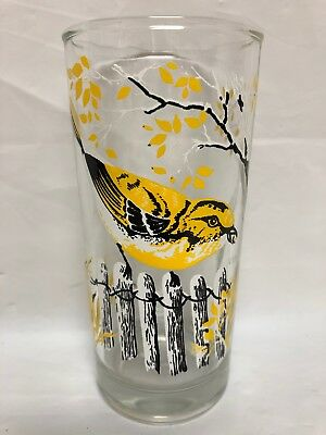 Yellow Throated Vireo Bird Vintage 12 Oz Highball Glass Tumblers Tom Collins EUC