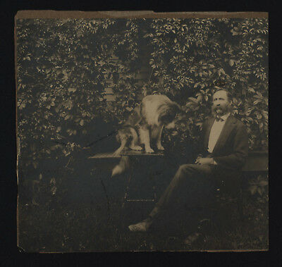 Collie Dog Sits on Table Next to Owner - Cabinet Photo Circa 1900