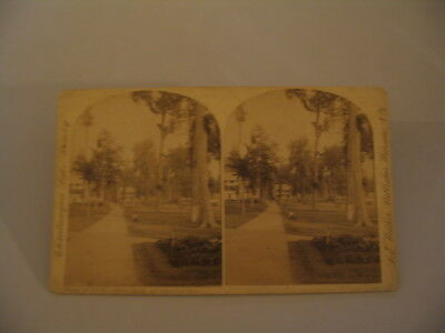 Chautauqua Lake New York LE Walker Stereoview Photo cdii Hotel Athenaeum Park