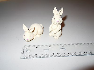 Two Tiny Bunny's