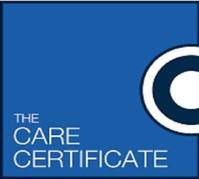 The Care Certificate 15 Complete Standard Answers Oct 2018