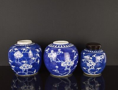 3 Chinese 19Th / 20Th Century Prunus Jars