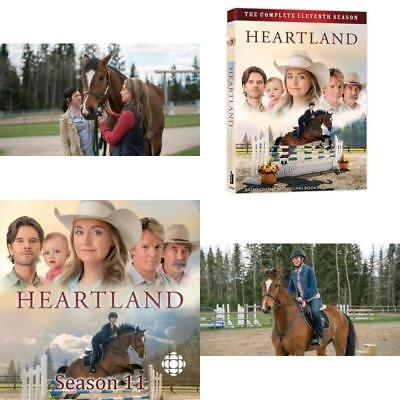 Heartland DVD The Complete 11th Season 18 Episodes Language English Multicolor