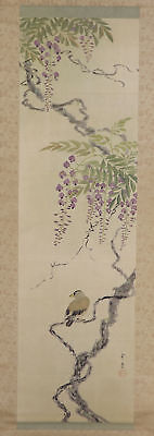 "JAPANESE HANGING SCROLL ART Painting ""Bird and Wisteria"" Asian antique  #E5768"