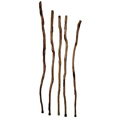 Tall Wooden Hiking Stick - Handcrafted Diamond Willow - Long Wood Walking Staff