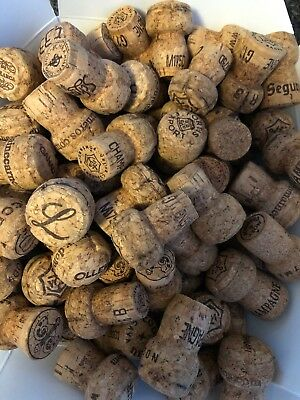 100  Champagne Corks - Great for Crafting -PRIORITY SHIPPING