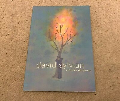 DAVID SYLVIAN 'TROPHIES 3 - A FIRE IN THE FOREST' LYRIC BOOK - Chris Bigg v23
