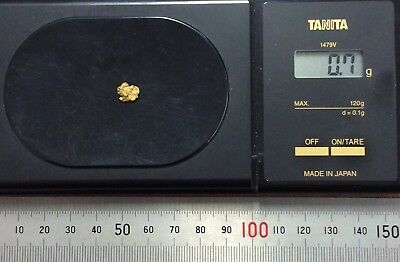 Australian natural gold nugget 0.7 grams approx weight .