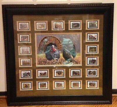 National Wild Turkey Federation NWTF 21 Stamps and Print 1990-2010 Framed RARE!