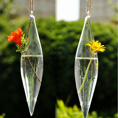 AC68 New Cute Glass Olive Shape 1 Hole Flower Plant Hanging Vase Office Decor