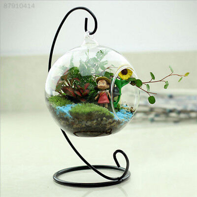 E902 New Glass Round with 1 Hole Flower Plant Hanging Vase Home Office Decor