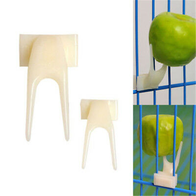 2x Birds Parrots Fruit Fork Pet Supplies Plastic Food Holder Feeding On Cage RS