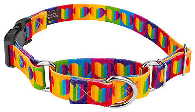 Country Brook Petz® Rainbow Hearts Martingale with Deluxe Buckle Dog Collar