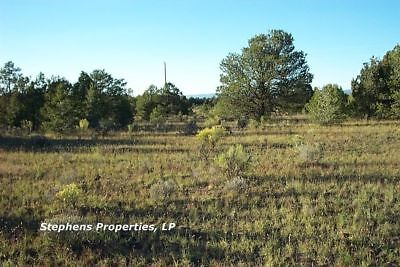 9.71 Acre Wooded Property - Gorgeous Mountain Get Away In New Mexico - 0% Terms