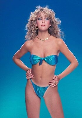 Heather Locklear (2) 4x6 Glossy Photos