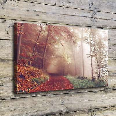 """12""""x20"""" Pathway Photos HD Canvas Print Painting Home Decor room Poster Wall Art"""