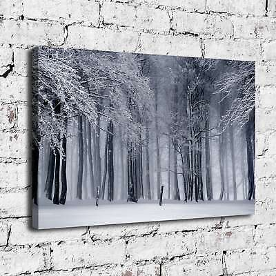 """12""""x18"""" White gray HD Canvas Prints Painting Home Decor room Wall Art Pictures"""