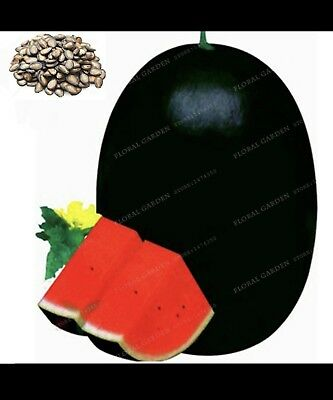 30pcs/bag Giant watermelon seeds Rare organic fruit Sweet fruit and vegetable se