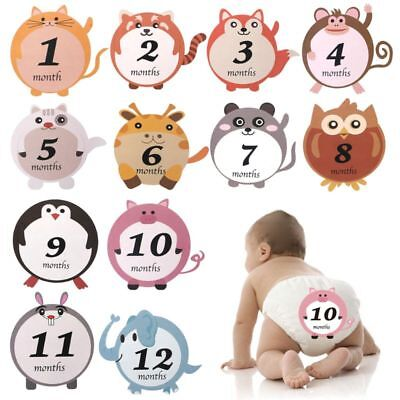 12 Pcs/Set Month Sticker Baby Pregnant Monthly Photography Cute Animal Stickers
