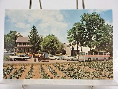 Postcard~The Amish Farm and House~Lancaster , Pa.~Old cars ~Horse and Buggy