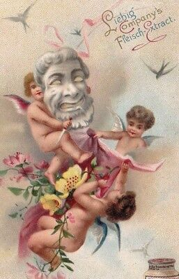Liebig Beef Extract Lovely Cherubs At Play Victorian Trade Card
