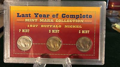 1937 Last Year of Complete Buffalo Nickel Mint Mark Collection in Display Case