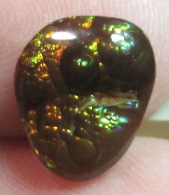 MEXICAN Fire Agate Gemstone Free form all  Natural Multicolored 10x8