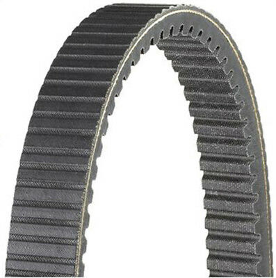 Dayco HPX5023 High Performance Extreme Drive Belts
