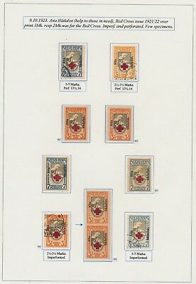 Estonia. 1923. Red Cross overprints. Page from EXHIBITION COLLECTION