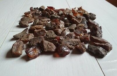Genuine Natural Raw Baltic Amber Stones Rough Beads 琥珀石 240 Gr Lot № 21