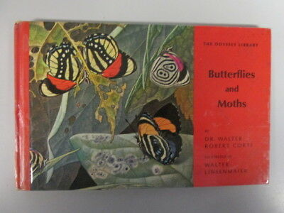 Good - Butterflies and moths (The Odyseey library) - Corti, Walter Robert 1964-0