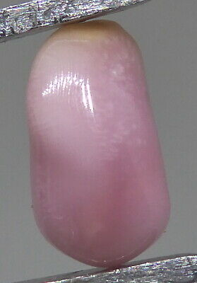 """Conch Pearl ,Pink,pastel ,saumon """" Weight: 1.55carats"""