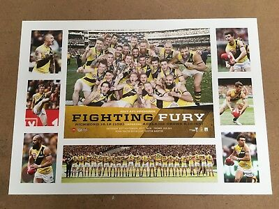 Richmond Tigers 2017 Afl Premiers Fighting Fury Tribute Official Print Martin