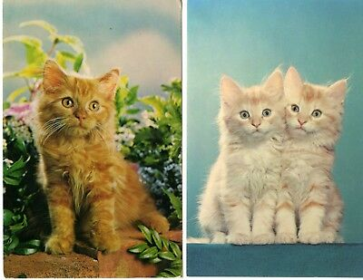 2 Vintage Kitten Postcards - Printed Great Britain PT 28 & 34