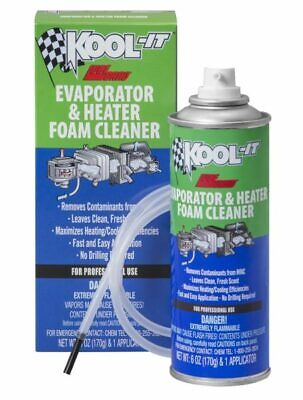 Lubegard Kool-It Evaporator and Heater Foam Cleaner BREATH FRESH CLEAN AIR 96030