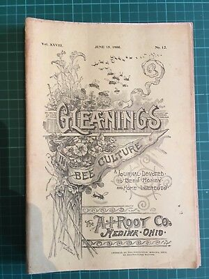 7 'Gleanings n Bee Culture' magazines 1900 vintage A.I.Root Honey Beekeeping USA