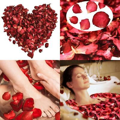 Hestya 100 Grams Dried Rose Petals Red Real Flower Petal for Bath red