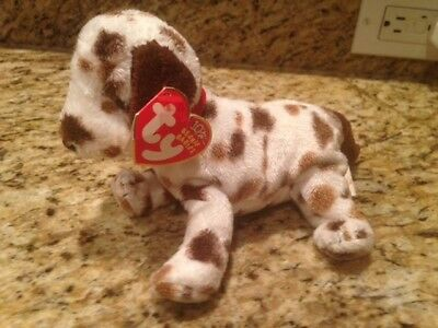 29e1ae419a7 TY Beanie Baby - BO the Dalmatian Dog with Tags 10 year 2002 with error on