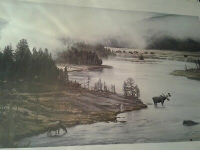 Jay Johnson moose river signed numbered limited edition print