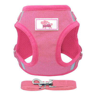 Reflective Small Dog Cat Walking Jacket Harness & Leads Soft Mesh Padded for Pet