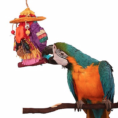 Pete the Parrot Ultimate Pinata Parrot Toy - Fill Your Own - Chewable Foraging