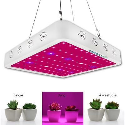 CASTNOO 1000W LED Grow Light Panel Lamp Full Spectrum Hydroponic Plant Growing G