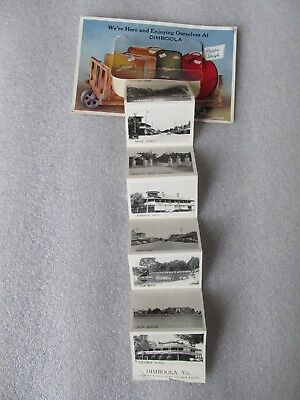 Vintage Foldout View Novelty Postcard, Enjoying ourselves at DIMBOOLA (Victoria)