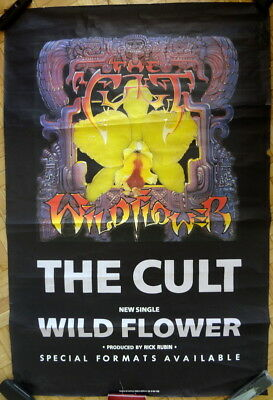 The Cult Wild Flower 1987 Large Original Promo Poster Ian Astbury Billy Duffy