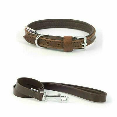 Dog Lead or Collar Ancol Vintage Leather Dog Puppy Padded Chestnut Brown